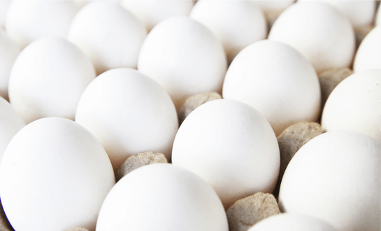 huevo-bco