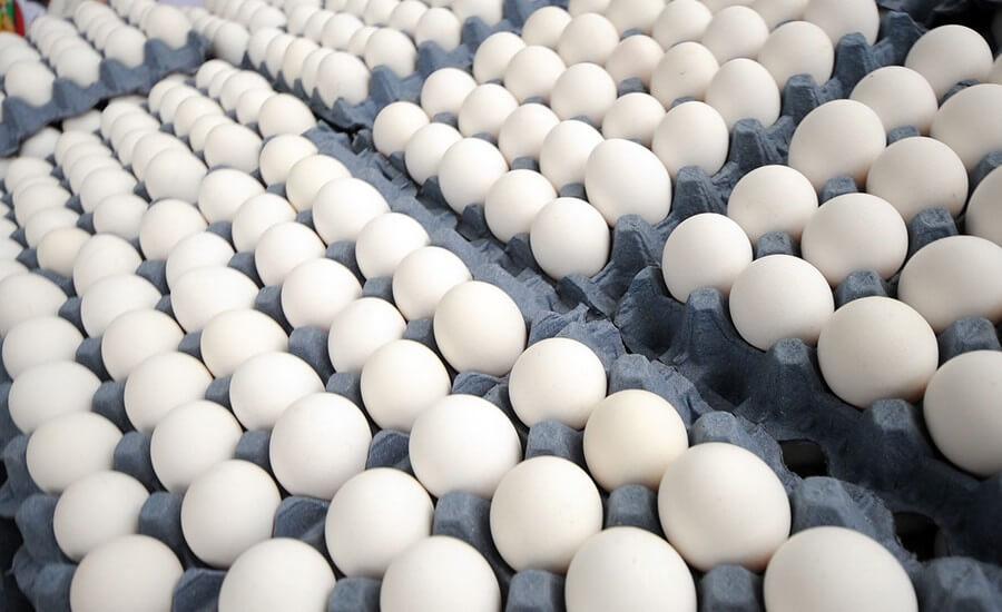 huevos2_2